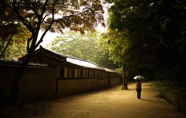 Природа Кореи