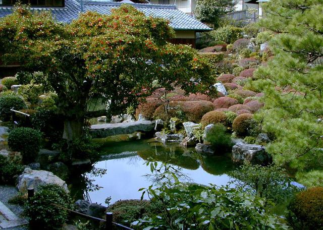 Изумительная природа Японии