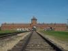 Известность городу принес музей Освенцим-Бжезинка. Он расположился на месте концлагерей и постоянно посещается тысячами туристов со всего света. Служит напоминанием всему миру о прошлой войне и ее жертвах.