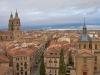 Воспетая известными испанскими поэтами, Саламанка (Salamanca) действительно представляет собой «золотокаменный» архитектурный шедевр. Нежный золотистого цвета камень, легший в основу строительства большинства зданий в городе, положил начало стилю платереско в саламанской архитектуре.