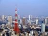 Прямо под башней, внизу, находится четырехэтажное здание с музеями, различными ресторанами и торговыми центрами. Токийскую телебашню часто можно увидеть в японских фильмах, где она служит указанием на то, что действие происходит именно в Токио.