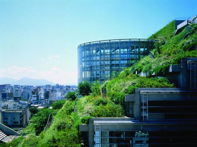 Главной особенностью можно назвать тот факт, что за всей этой красотой находятся стандартные офисы. Кроме великолепия природы, такой сад приносит огромную пользу, ведь нет необходимости в использовании кондиционирования.