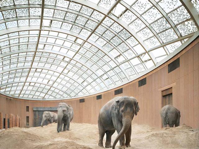 Первое сооружение зоопарка было спроектировано известным архитектором Норманом Фостером. Здание вышло достаточно аскетическим и практичным.