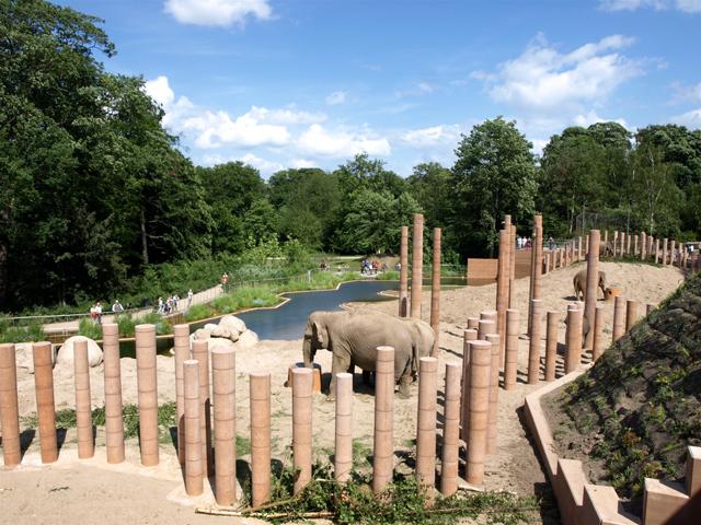 Главной особенностью постройки стало то, что компания Foster&partners начала создавать ее только после полного изучения правил жизни азиатского вида слонов. Именно поэтому дом слонов стал настоящим раем для этих животных.