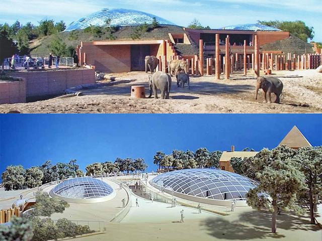Купола загонов изготовлены из стекла, что делает место наполненным светом и теплом. Кроме того, стекло создано с искусственным напылением, что полностью заменяет листья деревьев. Также есть здесь и специальные места, где слоны проводят купание.
