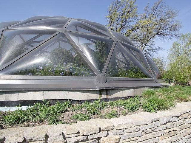 В более теплых странах организовать такие выставки проще – нет нужды в теплицах, бабочки могут обитать в естественной природной среде под сеткой.