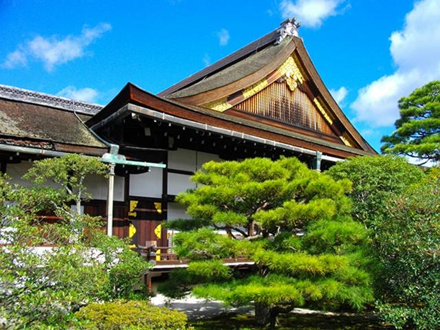Прибыв во Дворец Госё, можно до бесконечности любоваться его чайными домиками, прудом с деревянным мостиком, павильонами, галереями, красивым садом.