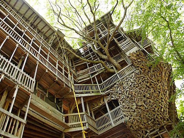 Хозяин и автор этого необычного дома – проповедник Гораций Бреджесс. Именно ему пришла в голову идея построить дом вокруг дерева так, чтобы деревянные стены и живое дерево переплетались между собой.