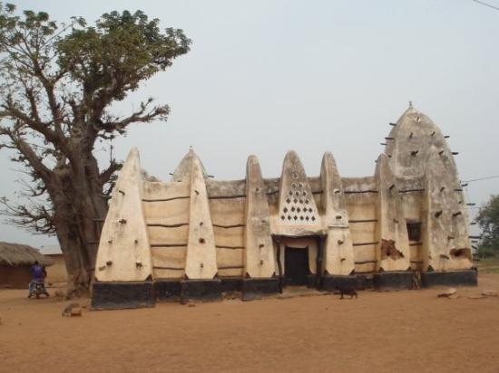 Гамбия богата залежами полезных ископаемых: золотом, алмазами, бокситами, марганцем, нефтью, газом и серебром, а так же лесом, рыбными и гидроэнергетическими ресурсами.