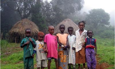 Численность населения - около 10,2 миллиона человек (по данным на июль 2008). По этническому составу: фульбе – около 40 %, малинке - 30 %, сусу - 15 % и другие народности.