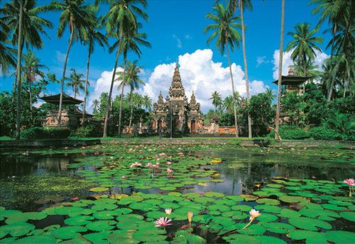 Тропический климат Индонезии характеризуется среднегодовой температурой в пределах 23-30° С и высокой, 80%-ной влажностью. Западный муссон, дующий с декабря по март, приносит с собой большое количество осадков.