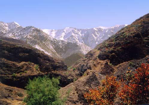 С юго-запада на северо-восток страну пересекают Атласские горы, в составе которых выделяют три основных хребта - Высокий Атлас, Средний Атлас и Антиатлас. Они делят территорию Марокко на две зоны – пустынную сахарскую и атлантическую, обеспеченную осадками.