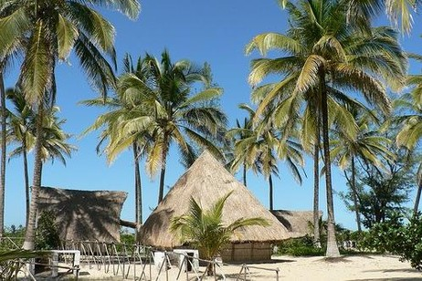 Мозамбик – республика, страна даже раньше так и называлась - «Народная Республика Мозамбик». Президент в ней избирается тайным голосованием. Он возглавляет не только правительство, но и вооруженные силы страны. 200-250 депутатов входят в состав парламента, которому принадлежит законодательная власть в республике. Однако парламент может быть распущен по решению президента.