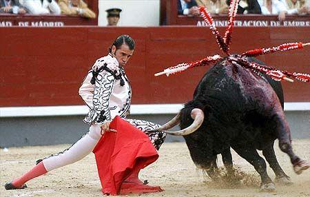 В Испании очень популярные различные ярмарки и Фиесты, например, ярмарка в Севилье, фиеста в Валенсии. Естественно, но  самым известным развлечением по прежнему остается коррида.