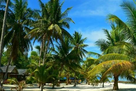 Острова архипелага либо коралловые (о. Тонгатапу), либо вулканические (о. Као, о. Тофуа). Некоторые, как например, остров Эуа, сложены известняками. На острове Као расположена самая высокая точка страны, достигающая 1033 м.